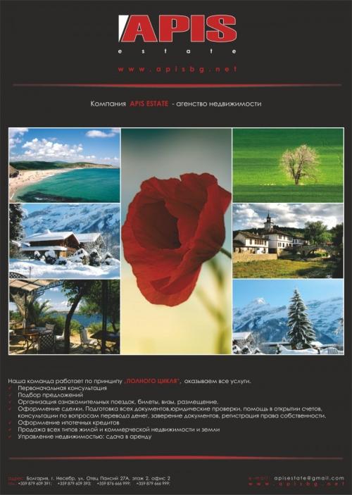 APIS flyer