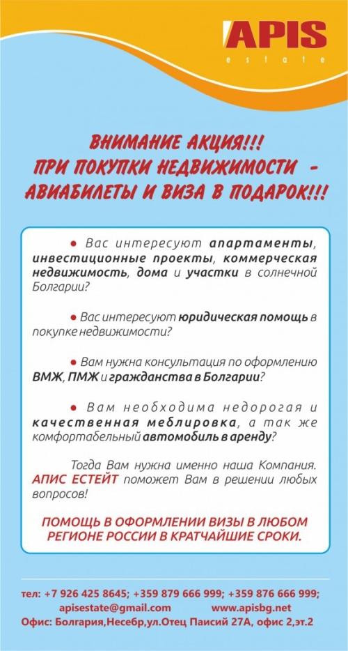 APIS flyer 2